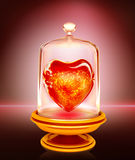 热的心脏 免版税库存照片