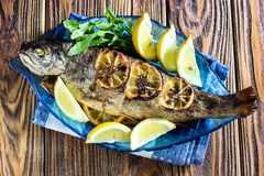 热的新鲜的美味烤整个鳟鱼烤肉用新鲜的草本和柠檬,供食黑胡椒和芝麻菜沙拉在蓝色pla离开 免版税库存照片