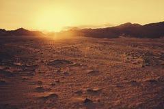 热的日落在沙漠 免版税库存图片