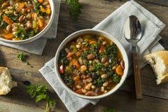 热的有机自创10豆汤 免版税库存图片