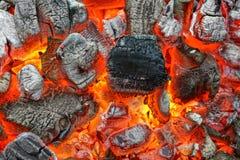 热的木炭 库存照片