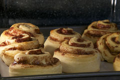 热的桂皮卷烘烤在对流烤箱的,几乎完成的上面 免版税图库摄影