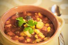 热的汤(墩牛肉)与菜 库存图片