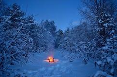 热的温暖的营火在多雪的冬天森林里 免版税库存图片