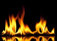 热的火 免版税库存图片
