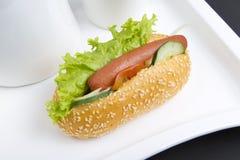 热的狗 免版税库存图片
