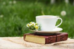 热的甘菊茶在绿色背景的庭院里 库存图片