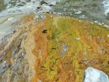 热的硫磺春天 库存照片