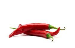 热的红色辣椒或辣椒 免版税库存照片