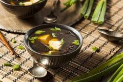 热的自创大酱汤 免版税库存照片