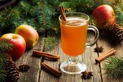 热的苹果汁传统冬天季节饮料 图库摄影