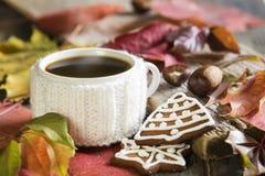 热的茶和姜饼干 免版税库存图片