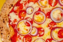 热的薄饼特写镜头 乳酪葱和蕃茄在被烧焦的基地 免版税库存图片