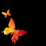 热的蝴蝶 向量例证