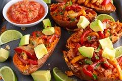 热的被烘烤的白薯充塞用黄色,红辣椒、鸡、乳酪、草本和辣调味汁 所选的重点 免版税库存图片