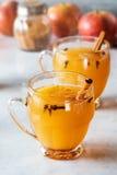 热的被仔细考虑的桂香加香料的苹果汁 免版税库存图片
