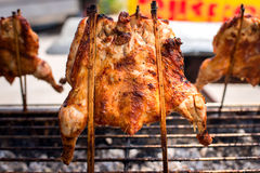 热的鸡塞住了与竹子,泰国地方食物 免版税库存照片