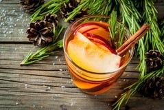 热的鸡尾酒用苹果,迷迭香,桂香 免版税图库摄影