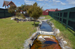 热的水池在罗托路亚村庄-新西兰 免版税库存图片
