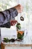 热的紫罗兰色蓬蒿茶 免版税图库摄影
