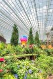 热空气气球和红色飞机 免版税库存照片