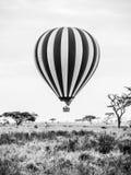 热空气气球在非洲 图库摄影
