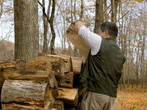 热被晒干的被堆积的冬天木头 免版税库存图片