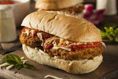 热诚的自创鸡巴马干酪三明治 免版税图库摄影
