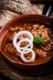热诚的菜炖牛肉汤 免版税库存照片