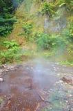 热通入蒸汽的春天 免版税库存图片