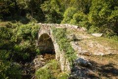 热那亚人的石曲拱桥梁在可西嘉岛的Balagne地区 图库摄影
