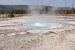 热量水池 库存图片