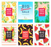 热,大夏天销售飞行物集合 给的收藏五颜六色的垂直的海报做广告用果子和棕榈叶 向量例证