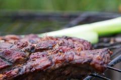 热,水多,开胃,适度地油煎的牛排,烹调在格栅,但是户外 暑假题材是远离ci 免版税库存图片