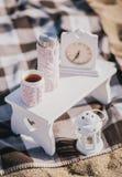 热水瓶和杯子在被编织的盖子 免版税库存照片