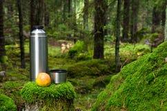 热水瓶和苹果在深森林里 免版税库存图片