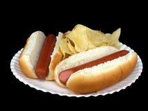 热3条筹码的狗 免版税图库摄影