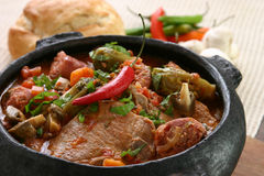 热ii炖煮的食物 库存照片