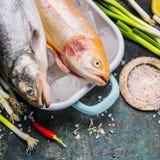 烹调与整个鳟鱼鱼,顶视图的饵料成份 库存照片