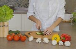 烹调从菜的沙拉 图库摄影