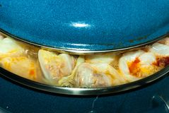 烹调俄国圆白菜卷的未加工的塞尔维亚盘版本充满肉末,米,葱称sarma接近  免版税库存照片