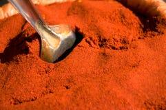 烹调印第安红色香料 免版税库存照片