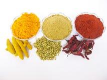 烹调印第安香料 免版税库存图片