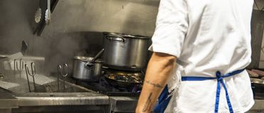 烹调可口板材的苦干者国际厨师在一家国际餐馆-后面看法 免版税库存照片
