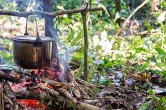 烹调在亚马逊 库存照片