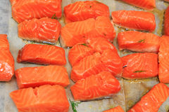 烹调在厨房的鳟鱼 库存图片