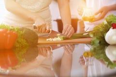 烹调在厨房里的人的手特写镜头  切沙拉的母亲和女儿或者两女性葱 健康膳食 免版税库存照片
