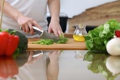 烹调在厨房里的人的手特写镜头  获得的朋友乐趣,当准备新鲜的沙拉时 素食主义者,健康我 免版税库存照片