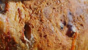 烹调在唾液的羊羔户外 影视素材