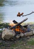 烹调在室外火的香肠 库存照片